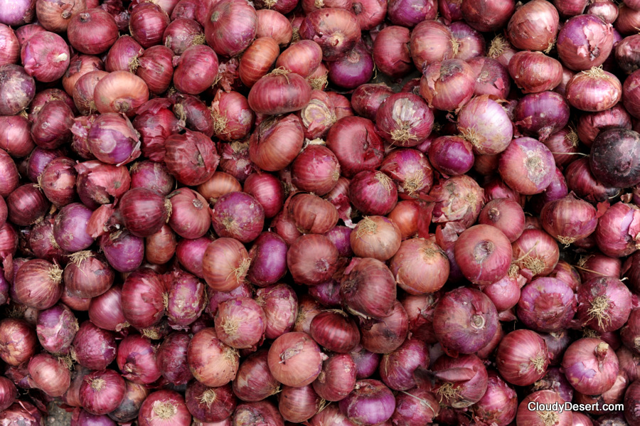 Onions waiting to be sorted